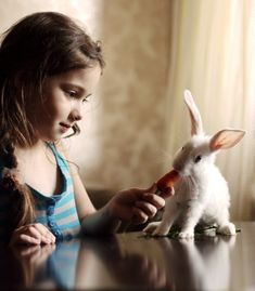 Animales y Niños - Animals and Kids Baby Bunnies, Cute Bunny, Bunny Bunny, Bunny Rabbits, White Rabbits, Easter Bunny, Animals For Kids, Cute Baby Animals, Cute Kids