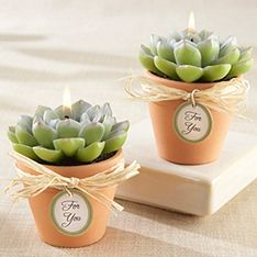 Desert Rose Cactus Candle Favor