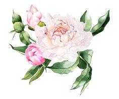Flowerfull branding on Behance