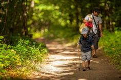 Top 4 Baby-Friendly Smoky Mountains Hiking Trails - Stony Brook made it easy to find the trails for the little ones in your family, Click the Pin!