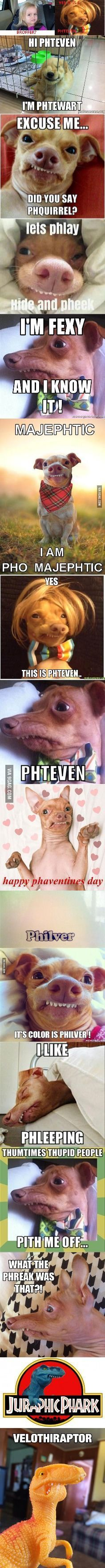 It's phteven...with a PH :B #funnydogvideos
