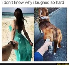 28+ Funny Memes Of Today's - #funnymemes #funnypictures #humor #funnytexts #funnyquotes #funnyanimals #funny #lol #haha #memes #entertainment #vifunow.com