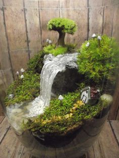 Amazing Huge Waterfall Terrarium with Raku Fired Miniature Advanced 39 Fairy Garden with Waterfall Indoor Fairy Gardens, Fairy Garden Plants, Mini Fairy Garden, Miniature Fairy Gardens, Garden Art, Garden Design, Indoor Garden, Mini Terrarium, Decor Terrarium