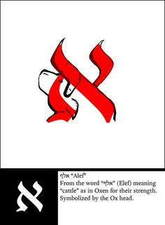 Alef, the first letter in the Hebrew alphabet. Also the first letter in the Arabic alphabet