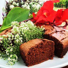 Receita de Bolo de chocolate fofinho sem glúten e sem lactose, feito com biomassa de banana verde e farinha de quinoa.