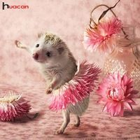 Diy Diamond Painting Full Square Drill Round Animals Cute Hedgehog Flower Dance Paintings by number Decoration Happy Hedgehog, Hedgehog Pet, Cute Hedgehog, Animals And Pets, Funny Animals, Animal Pictures, Cute Pictures, Hedgehog Cross Stitch, Cute Little Animals
