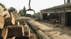 Processing newly felled green oak at the timber yard Oak Framed Buildings, Conservatory, Carpenter, Railroad Tracks, This Is Us, Construction, Yard, Film, Green