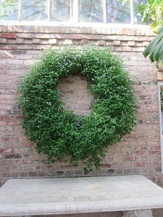"""living wreath made of clover - LIke how """"wild and untamed"""" this is -   http://www.mosserlee.com/product/529_LivingWreath.aspx"""