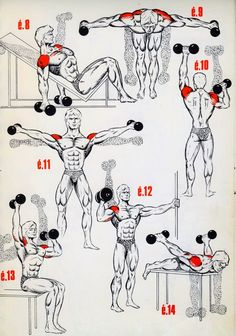 Personal Trainer Shoulder Workout is part of Bodybuilding workouts - Fitness Workouts, Gym Workout Tips, Easy Workouts, At Home Workouts, Fitness Motivation, Traps Workout, Workout Body, Weight Training Workouts, Fitness Gear