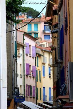 Collioure (France)