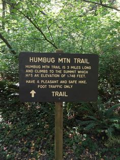 The Humbug Mountain Trail In Oregon Will Lead You On An Adventure Like No Other – Typical Miracle Oregon Vacation, Oregon Road Trip, Oregon Trail, Oregon Usa, Oh The Places You'll Go, Places To Travel, Travel Destinations, Southern Oregon Coast, Mountain Trails