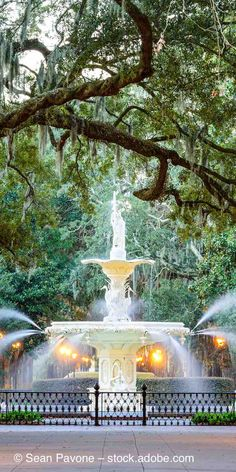 Visit Savannah in the fall for great weather and many festivals and events