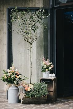 vintage ceremony decor with an olive tree and pink flowers