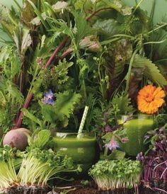 """Gesund ernähren mit grünen Smoothies. Aus: """"7 Tage grün"""", TRIAS Verlag. ©Meike Bergmann, Berlin"""