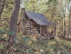 This is the cabin in the woods that Cole,Garvey,and I stayed in while we were on   the island.