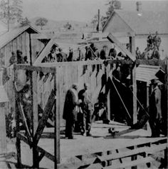 Execution of a soldier of the 8th Infantry at Prescott, Arizona, 1877  From: The National Archives
