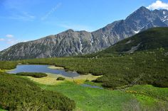 A beautiful landscape in the Belianske Tatry in Slovakia. Stock Pictures, Stock Photos, High Tatras, White Lake, Pattern Drawing, Design Patterns, Birds In Flight, Beautiful Landscapes, Tourism