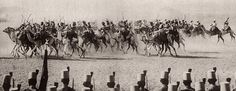 The Egyptian Camel Corps that fought with the British during World War I, 1914