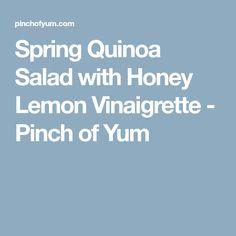 Spring Quinoa Salad with Honey Lemon Vinaigrette - Pinch of Yum