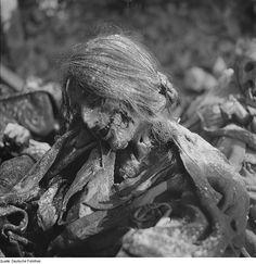 The charred remains of a woman after the Allied bombing of Dresden, Germany in February, 1945 via reddit [[MORE]] source - Wikipedia