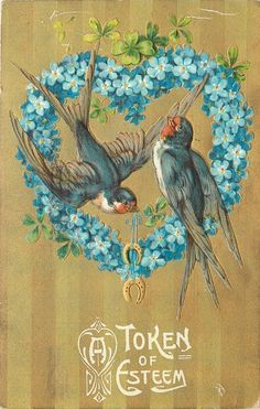 Barn Swallows in Blue Forget-Me-Not Heart~Gold Stripe Back~Embossed~1911 ZIM Barn Swallow, Heart Illustration, Swallows, Forget Me Not, Gold Stripes, Emboss, Blue, Collection, Swallow