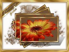 Frame, Home Decor, Picture Frame, Decoration Home, Room Decor, Frames, Home Interior Design, Home Decoration, Interior Design