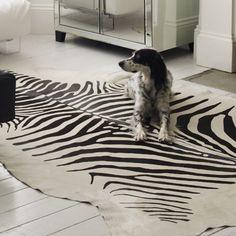 Zebra Printed Cowhide Rug - Rugs & Animal Skins - Home Accents