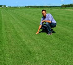 Zoysia Grass Seed Lawn Learn How To Grow Zoysia Grass