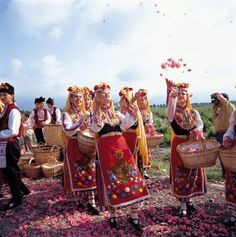 The Rose Festival     The Rose Festival takes place every year in the city of Kazanlak, Bulgaria, during the first week of June. It celebr...