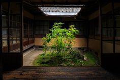 爽やかな緑に包まれたお庭。 暑い日でしたが、涼やかな風が吹き抜けるお部屋でお茶をいただきました。 (※7月28日撮影) 無鄰菴にやってき...