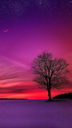 What a beautiful Sunset ! Beautiful Sunset, Beautiful World, Beautiful Images, Beautiful Lights, Beautiful Scenery, Nature Photography, Landscape Photography, Night Skies, Sky Night
