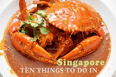For the opening of this blog post on the Things to Do in Singapore, I wanted to show the beautiful Singapore Skyline, but I decided to use a photo of food sin
