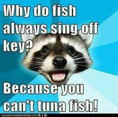 Why do fish always sing off key? Because you can't tuna fish.