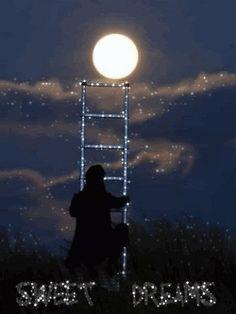 Noite é pɑrɑ descɑnsɑr,  ɑcɑlmɑr, refletir, sonhɑr.  De Alma para Alma