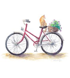 Red Bicycle Watercolor Print  Cat Art  Cute  Kawaii by FuzzyLlamas