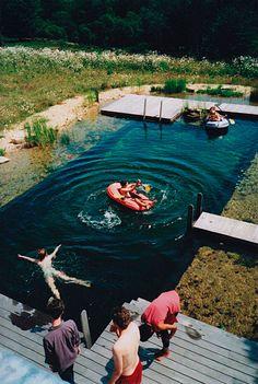 Eco friendly pool... cool idea!  <3 eco-piscina