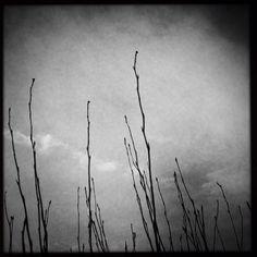 Steveston Wind Turbine, Art Photography, Image, Fine Art Photography, Artistic Photography