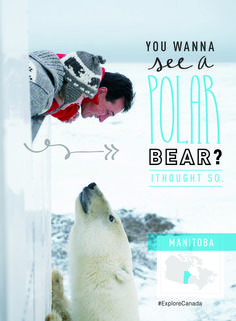 Just make sure the polar bear doesn't see you first... | @explorecanada