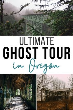 Ultimate oregon ghost tour low carb nomad on a limb 8 gorgeous treehouse rentals in oregon Oregon Beaches, Oregon Waterfalls, Oregon Road Trip, Oregon Trail, Oregon Coast Roadtrip, Oregon Ducks, Road Trips, Columbia River Gorge, Death Valley