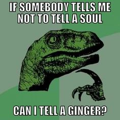 Lol I love ginger jokes :)