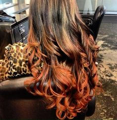 fire ombre, blended highlights all the way up. Looks siiiiiick but I'd never do it Hair Color And Cut, Hair Colour, Natural Hair Styles, Long Hair Styles, Dye My Hair, Pretty Hairstyles, Hairstyle Ideas, Hair Dos, Gorgeous Hair