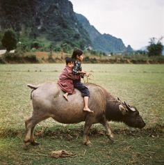 fotojournalismus:  Vietnam,Thomas Billhardt