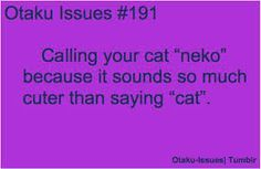 Otaku issues actually its more like other peoples cats i don't own a neko.....