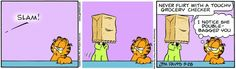 Garfield & Friends | The Garfield Daily Comic Strip for May 28th, 2005