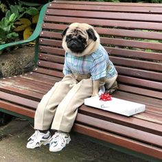 Life is like a box of chocolates..and I ate most of them and then i must go Run-nang to the next box !!