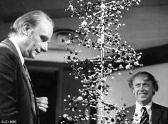 Risultati immagini per james watson e francis crick 1968