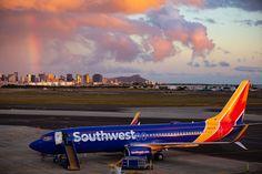 Can Hawaiian Airlines Survive Southwest-What Airplane Does Southwest Fly To Hawaii Southwest Airlines Reservations, Airline Reservations, Hawaii Airlines, Major Airlines, Fly To Hawaii, Hawaii News, Honolulu Hawaii, Hawaii Airport, Hawaii Flights