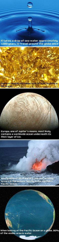 Science Facts - But seriously, how could you measure the first two?
