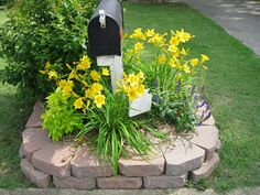 Flowers Around Mailbox | The flowers around the mailbox are also extra pretty this year.