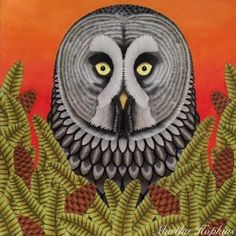 Curious Creatures – Millie Marotta